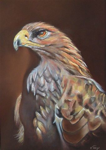 Aguila Real